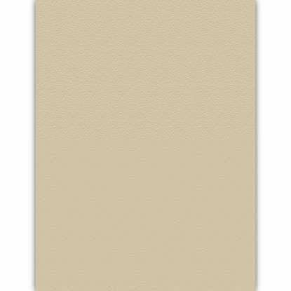 Picture of Desert Storm Tan 100lb 12x18 Smooth Environment Digital Smooth Cover - 500 Sheets
